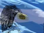 ARGENTINA: IL DEFAULT INDOTTO dall'ESTERNO