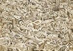 Il caos nel mondo è alimentato dall'imperialismo