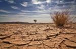La Cop 23 di Bonn all'insegna dell'attendismo dei Grandi della Terra mentre il surriscaldamento globale e gli eventi climatici estremi si fanno sempre piùdrammatici